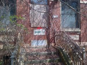 Ward 41